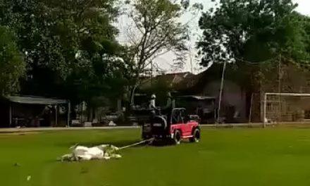 Viral! Diduga Imbas Pilkades, Patung Kuda Kantor Desa Pasirkamuning Dirobohkan