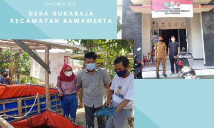 KKN Online, Mahasiswa UBP Karawang Bantu Kendala Perizinan UMKM Lele di Desa Sukaraja