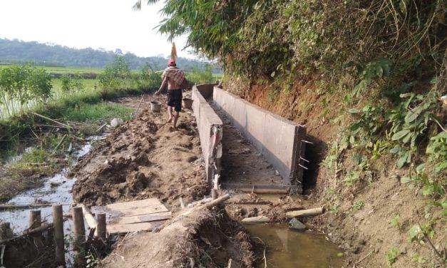 PPK dan Barjas 'Saling Lempar' Penyebab CV Davied & Co Bukan Pelaksana Peningkatan Irigasi di Pangkalan